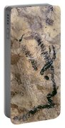 Cave Art: Bison Portable Battery Charger