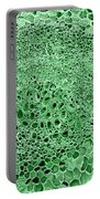 Celery Stalk, Sem Portable Battery Charger