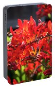 Crocosmia Lucifer Portable Battery Charger