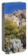 Desert Landscape Portable Battery Charger