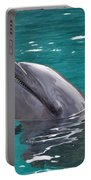 Dolphin Portable Battery Charger