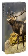 Early Morning Bull Elk Portable Battery Charger