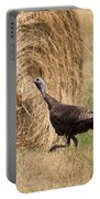 Female Eastern Wild Turkey Portable Battery Charger