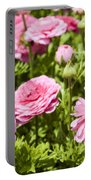field of cultivated Buttercup  Portable Battery Charger