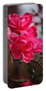 Flora No. 2 Portable Battery Charger