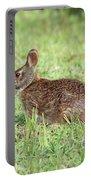 Florida Marsh Rabbit Portable Battery Charger