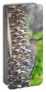 Gila Woodpecker Portable Battery Charger