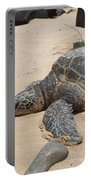 Green Sea Turtle With Gps Portable Battery Charger