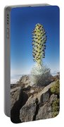 Haleakala Silversword Portable Battery Charger