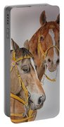 2 Horses Portable Battery Charger