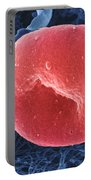 Human Red Blood Cell, Sem Portable Battery Charger