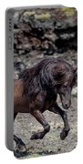 Icelandic Black Stallion, Iceland Portable Battery Charger