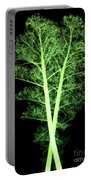 Kale, Brassica Oleracea, X-ray Portable Battery Charger