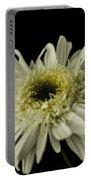 Leucanthemum Highland White Dream Portable Battery Charger