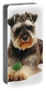 Miniature Schnauzer Portable Battery Charger by Jane Burton