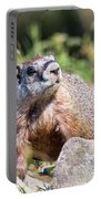Mr. Marmot Portable Battery Charger