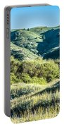 Muir Woods Forest Drive By Nature Near San Francisco Portable Battery Charger