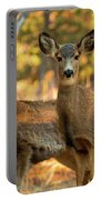 Mule Deer In The Woods Portable Battery Charger