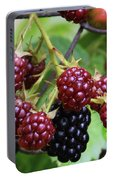 My Blackberries Portable Battery Charger