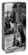 Nature Scenes Around Hunting Island South Carolina Portable Battery Charger
