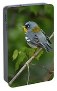Northern Parula Portable Battery Charger