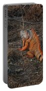 Orange Iguana Portable Battery Charger