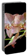Orchid Phalaenopsis Flower Portable Battery Charger