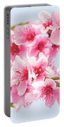 Peach Flowers Portable Battery Charger