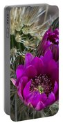 Pink Hedgehog Cactus  Portable Battery Charger