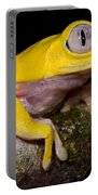 Red-eyed Treefrog, Xanthic Form Portable Battery Charger