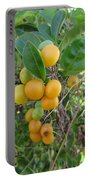 Ripening Citrus Portable Battery Charger