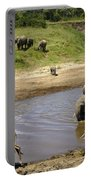 River Crossing Portable Battery Charger