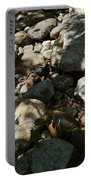 River Stones Portable Battery Charger