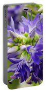 Royal Botanical Garden Of Madrid Portable Battery Charger