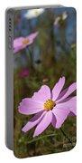 Sensation Cosmos Bipinnatus Fully Bloomed Pink Cosmos At Garde Portable Battery Charger