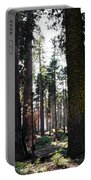 Sequoia National Park Portable Battery Charger