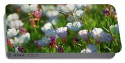 Showy Evening Primrose Portable Battery Charger