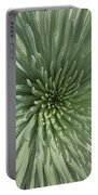 Silversword, Haleakala Portable Battery Charger