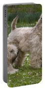 Soft-coated Wheaten Terriers Portable Battery Charger