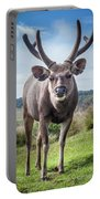 Sri Lankan Sambar Deer Male Portable Battery Charger