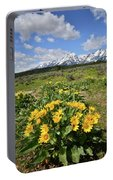 Teton Balsam Root Portable Battery Charger