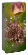 Water Avens Portable Battery Charger