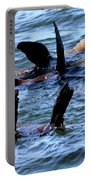 Water Ballet Portable Battery Charger