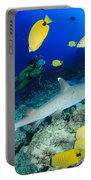 Whitetip Reef Shark Portable Battery Charger
