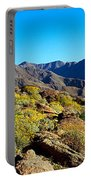 Wildflowers On Rocks, Anza Borrego Portable Battery Charger