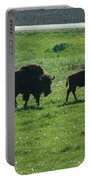 Wisconsin Buffalo Portable Battery Charger