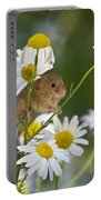Young Eurasian Harvest Mouse Portable Battery Charger