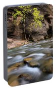 Zion National Park Narrows Portable Battery Charger