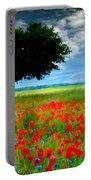 Landscape Illumination Portable Battery Charger