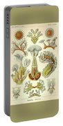 Vintage Zoological Portable Battery Charger